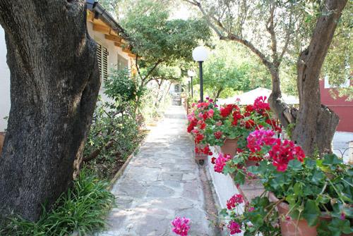 Marina di Camerota - Villaggio Residence Chalet degli Ulivi- Villini