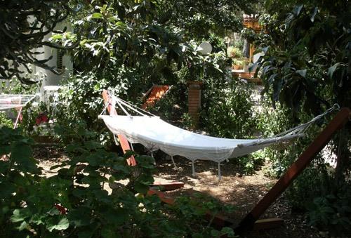 Marina di Camerota - Villaggio Residence Chalet degli Ulivi