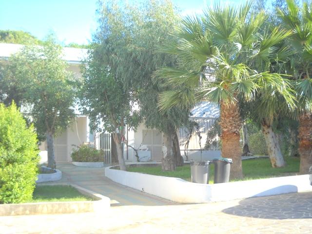 Sellia Marina - Villaggio La Fenice - Viali Interni