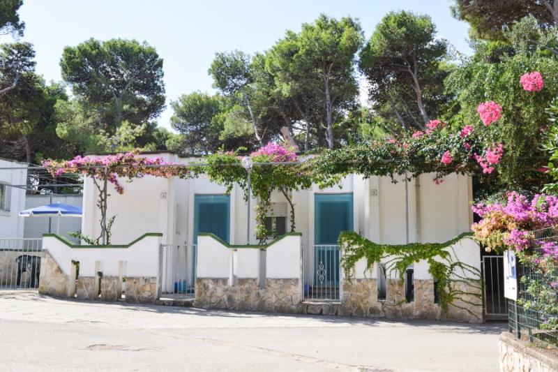 Carovigno - Villaggio Camping Pineta al Mare - Bungalows
