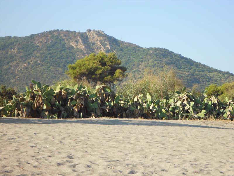 Patti - Medimare Residence Club - Spiaggia