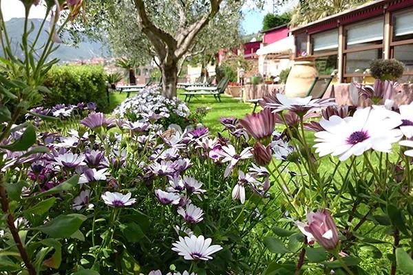 Tovo San Giacomo -Il Casale Resort - Giardino