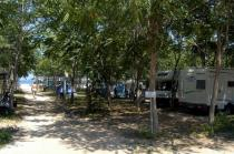Camping Marina del Convento- Viale alberato