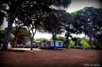 Arborea -Camping S'ena Arrubia - Mobile Home