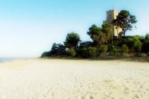 Spiaggia di Pineto