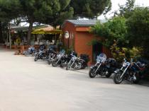 International Camping Valledoria - Ingresso