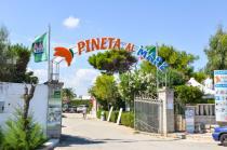 Carovigno - Villaggio Camping Pineta al Mare - Ingresso