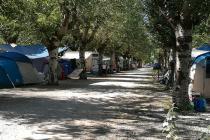 Sarzana - Parco Vacanze Marina 3B - Area Campeggio