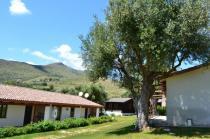 Green Village Vacanze -Cottage