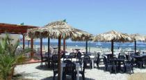 Salicamp Villaggio Vacanze- Bar in Spiaggia
