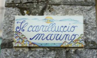 B&B Cavalluccio Marino