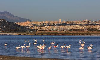 Mare a Cagliari