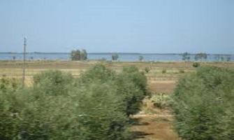 Lesina la porta del Parco nazionale del Gargano
